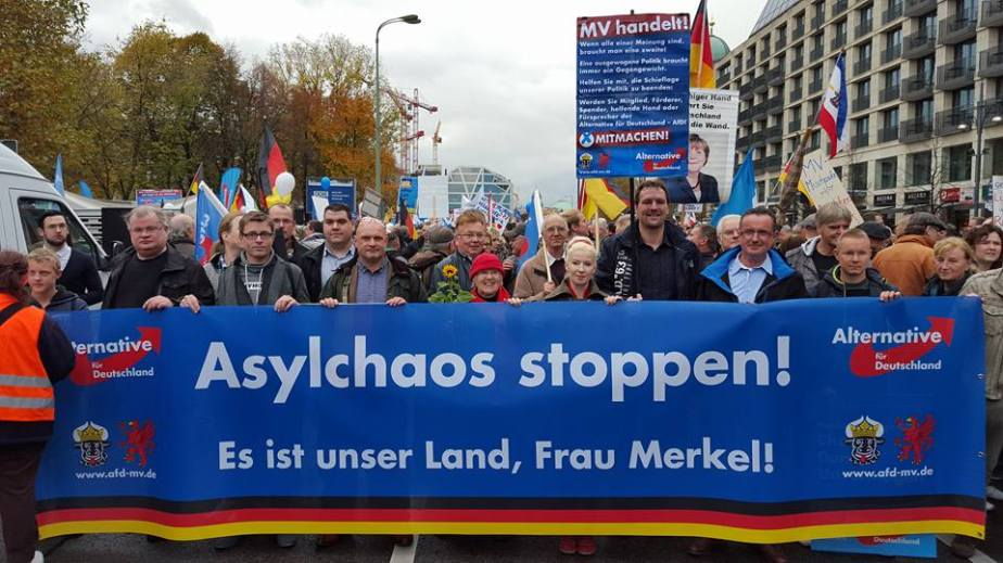 Berlin, 7.11. Foto: AfD/Facebook
